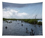 Ominous Clouds Over A Cozumel Mexico Swamp  Tapestry