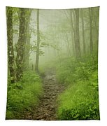 Craggy Gardens Trail Tapestry