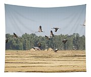 Cranes Over Ethiopia Tapestry