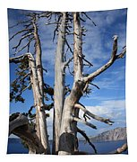 Crater Lake Tree Tapestry