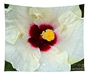 Creamy Hibiscus With Rain Drops Tapestry