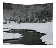 Creek In Snowy Landscape Tapestry