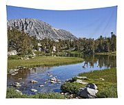 Creek With A View Tapestry