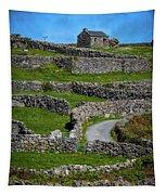 Criss-crossed Stone Walls Of Inisheer Tapestry by James Truett