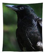 Crow-6870 Tapestry