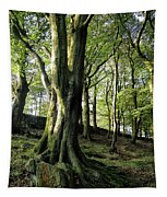 Crow Nest Woods Tapestry