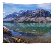 Crowfoot Reflection Tapestry