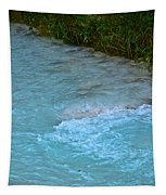 Crystal Waters Tapestry