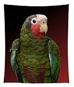 Cuban Amazon Parrot Tapestry