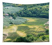 Cultivated Vineyards Tuscany  Italy Tapestry
