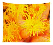 Cup Coral Tapestry