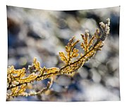 Curled Fern Frond Tip Tapestry