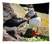 Cute Puffin Couple In Iceland Latrabjarg Tapestry