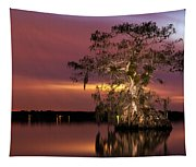 Cypress At Twilight Tapestry
