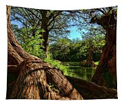 Cypress Bend Park In New Braunfels Tapestry