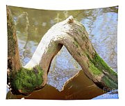 Cypress Knees Tapestry