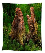 Cypress Knees Tapestry