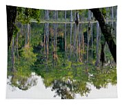 Cypress Pond Tapestry