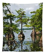 Cypress Reflections Tapestry