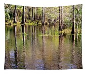 Cypress Trees Along The Hillsborough River Tapestry
