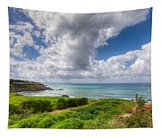Cyprus Spring Seascape And Landscape Tapestry