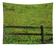 D7b6306 Fence And Poppies Tapestry