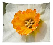 Daffodil Narcissus Flower Tapestry