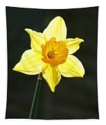 Daffodil Tapestry