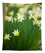 Daffodils In A Bunch Tapestry