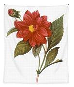 Dahlia (dahlia Pinnata) Tapestry