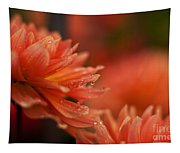 Dahlia Rainshower Tapestry