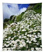 Daisies Tapestry