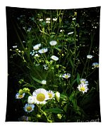Daisy And Friends Tapestry