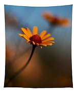 Daisy Standout Tapestry