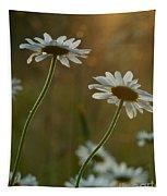 Daisy Sunset Tapestry