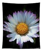 Daisy Under Sun Tapestry