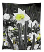 Dallas Daffodils 54 Tapestry
