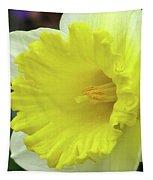 Dallas Daffodils 72 Tapestry