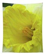 Dallas Daffodils 73 Tapestry