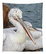 Dalmatian Pelican #3 Tapestry