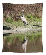 Dancing On The Pond Tapestry