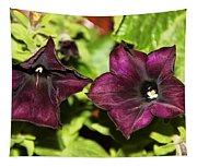 Dark Purple Petunia Tapestry