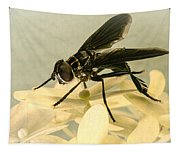 Dark Winged Comb Footed Fly Tapestry