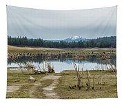Davis Creek And Maiden Peak Tapestry