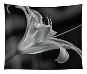 Day Lily 2 Bw Tapestry