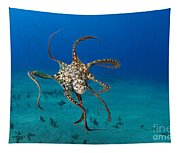 Day Octopus Tapestry