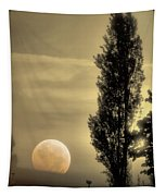 Daybreak On A Country Road Tapestry