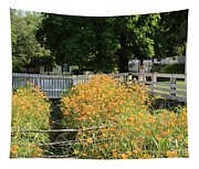 Daylilies In The Spring Tapestry