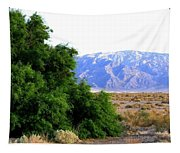 Death Valley 2 Tapestry