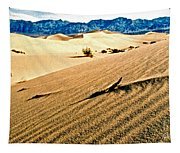 Death Valley National Park Tapestry